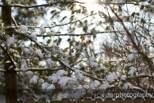 March_5-013-lowres